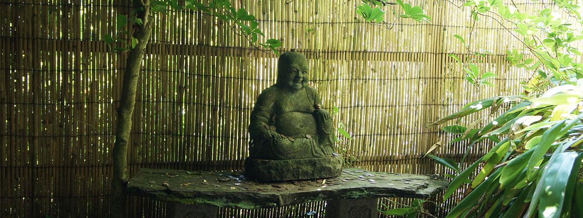japanese-garden-newquay